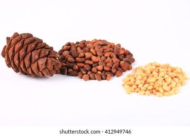 Cedar cones and nuts
