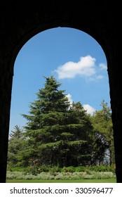 A Cedar of the Lord (Cedrus Libani) at the Beiteddine palace garden viewed through an Arch. Lebanon.