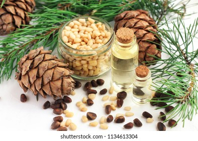 Cedar nut oil in bottles, pine cones and green boughs, seeds in jar and scattered. Natural holistic remedy for food and cosmetic use.