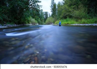 Cedar River Fly Fishing