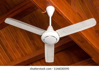 ceiling fan decoration interior in the room