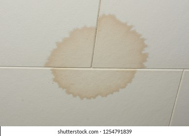 Ceiling tiles stained by a water leak in the roof.