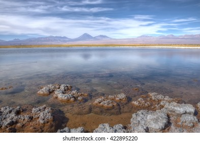 Cejar lagoon, Atacama Desert, Chile