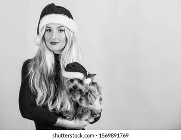 Celebrate christmas with pets. Reason love christmas with pets. Ways to have merry christmas with pets. Girl attractive blonde hold dog pet pink background. Woman and yorkshire terrier wear santa hat.