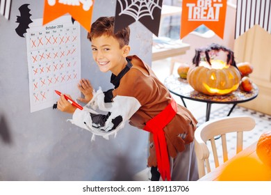 Celebration day. Beaming handsome boy wearing Halloween costume feeling extremely happy on celebration day
