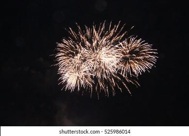 celebration fireworks in sky