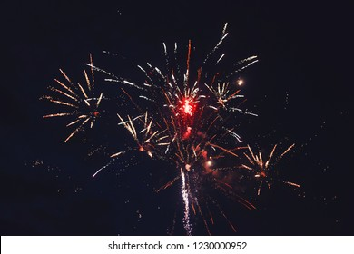 Celebratory bright firework in a night sky.