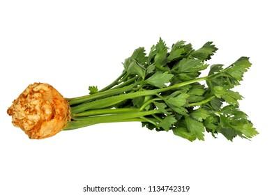 Celeriac isolated on white background