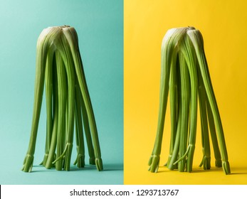 Celery composition concept on color background