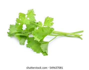 Celery isolated on white background