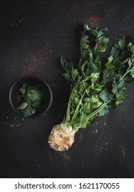 Celery root with green leaves on dark background. Overhead shot.