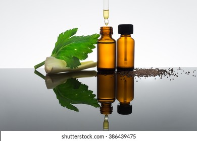 Celery seeds essential oil in amber bottle with dropper, with celery stick, seeds and leaf.
