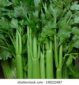 Celery stalks close up