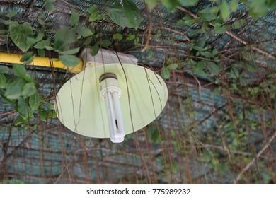 celing green lamp