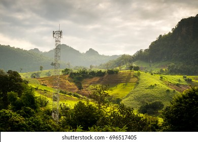 Cell site Post in the nature, telecommunication technology pillar in farm near forest morning.