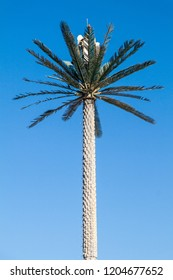 Cell tower disguised as a palm in Abu Dhabi, United Arab Emirates