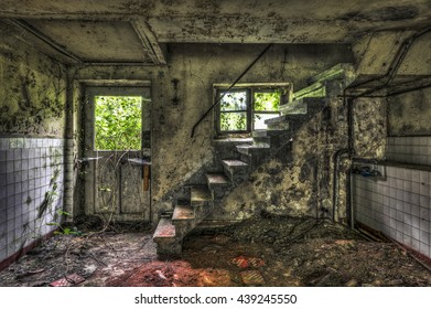 Cellar Staircase in an abandoned house