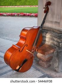 Cello in a beautiful garden