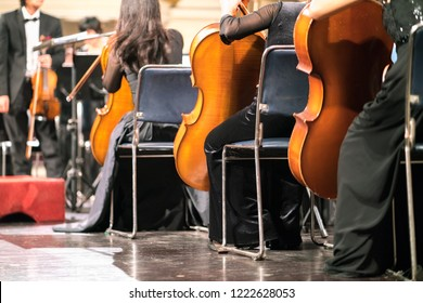 Cello in cellist hands at classical music symphony concert closeup