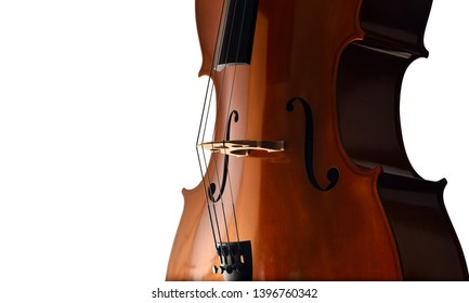 Cello closeup in dramatic light on white background