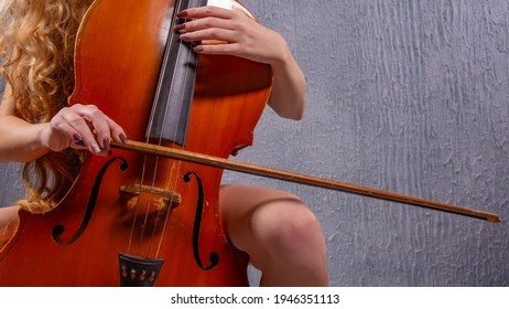 Cello music instrument orchestra player cellist playing classic. Closeup of cello with bow in hands