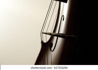 Cello strings close-up.