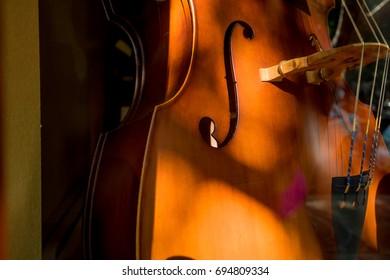 Cello Violin Body