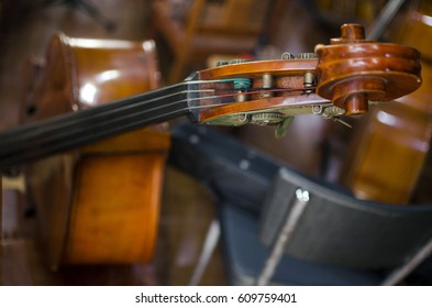 Cellos supported in chairs before the concert