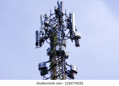 Cellular Base Station or Base Transceiver Station. Telecommunication tower. Wireless Communication Antenna Transmitter. 3G, 4G and 5G Cell Site. With bindweed on tower.