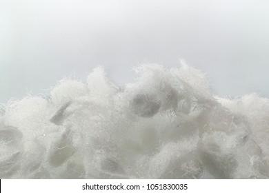 Cellulose fiber,  macro image