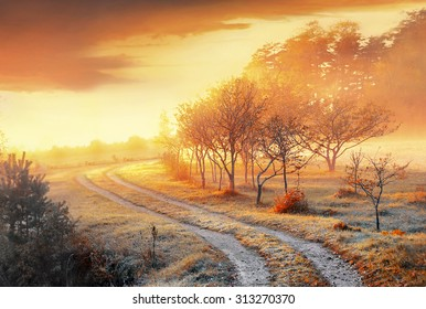 Celso fall and fog, golden autumn