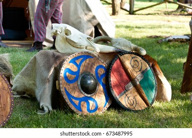 Celtic Armory Camp with Skulls and Shields on Fur Mantle Gray Red Green Blue Clan with Tents on Background