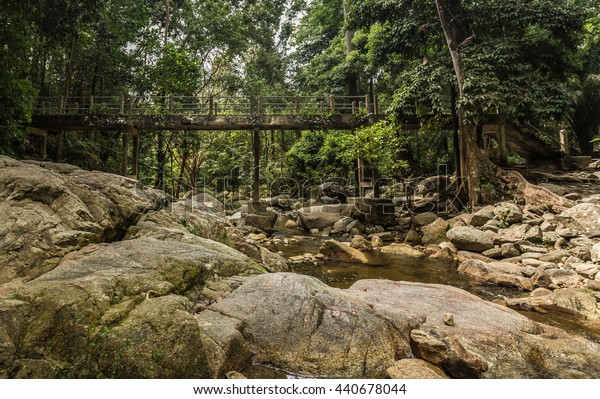The cement bridge in the forest with waterfall.