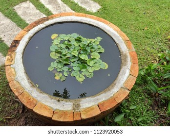 Cement pond Red brick in a circular pattern and plastered with cement inside. Used for lotus Decorate a place or garden to beautiful.
