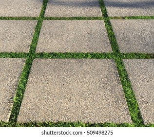 Cement Square Grass Path.