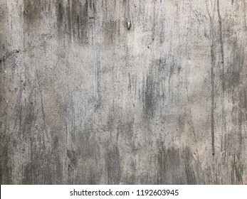 The cement wall background.