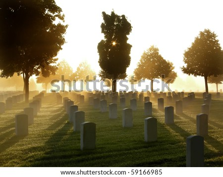 Image result for shutterstock images of a foggy cemetery