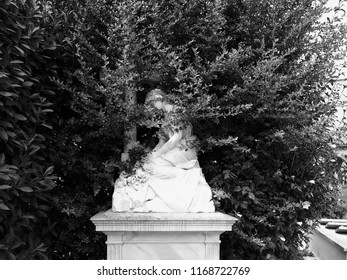 Cemetery. A statue is half hidden by a box plant. Black and white photo.