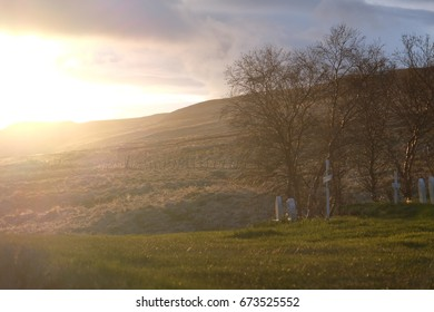 cemetery at sunset in the countryside, eternal rest and peace, funeral, mourning
