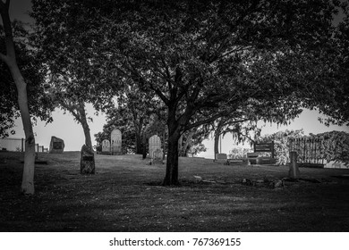 Cemetery surrounded by trees on hill in black and white