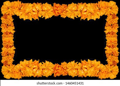 Cempasuchil flower frame, Mexican flower of the day of the dead in Mexico
