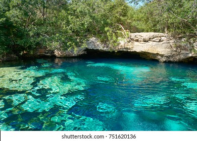 Cenote in Riviera Maya of Mayan Mexico sinkhole exposing groundwater