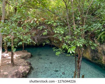 Cenotes are natural sinkholes that are a popular tourist attraction in the Yucatan region of Mexico.