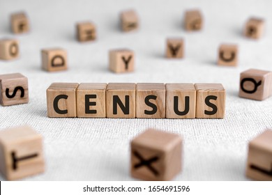 Census - words from wooden blocks with letters, official count or survey of a population, census concept, white background