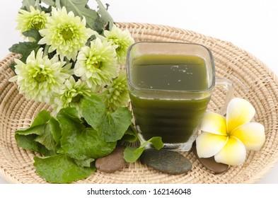 Centella asiatica, Asiatic Pennywort, (Centella asiatica (Linn.) Urban.) Herbal Drink. Has medicinal properties.