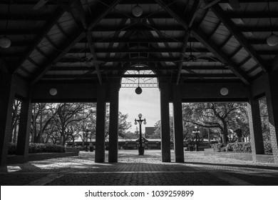 Centennial Park Tampa
