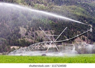 Center pivot irrigation equipment watering an alfalfa field in Kamloops, British Columbia, Canada.