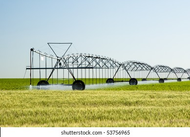 a center pivot irrigation system in a corn field with a wheat field in the foreground