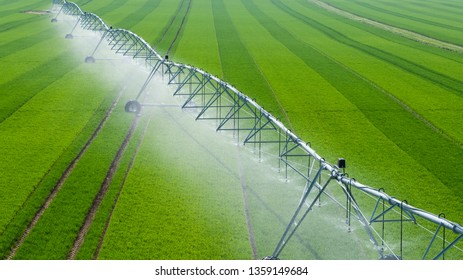 Center Pivot Irrigation System in a green Field