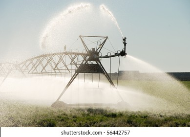 Center pivot irrigation system on a alfalfa field in central Oregon with crow and nest.